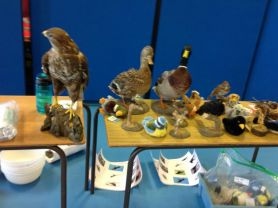 Bird Study with Churchill PS